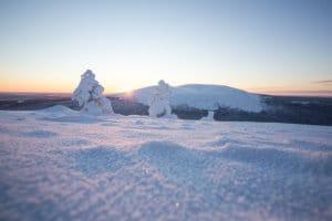 Ilmastonmuutokseen sopeutuminen Suomen talvimatkailuyritysten menestystekijäksi