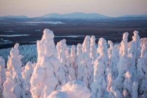 Voiko hiihtolomailija suojella talviamme? Neljä fiksua vinkkiä ilmastoystävän lomaan